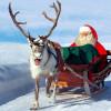 Le renne di Babbo Natale sono assicurate? E lui in che modo si tutela?