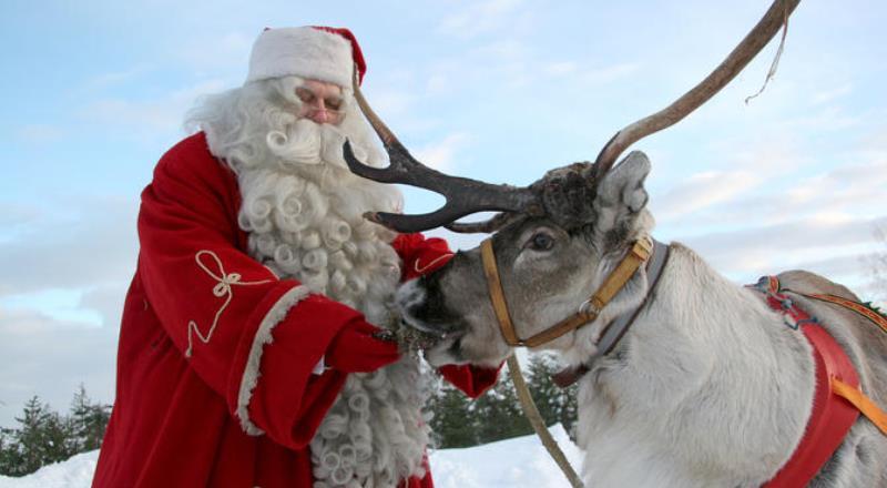 Renne Di Babbo Natale Nomi.Le Renne Di Babbo Natale Sono Assicurate E Lui In Che Modo Si Tutela