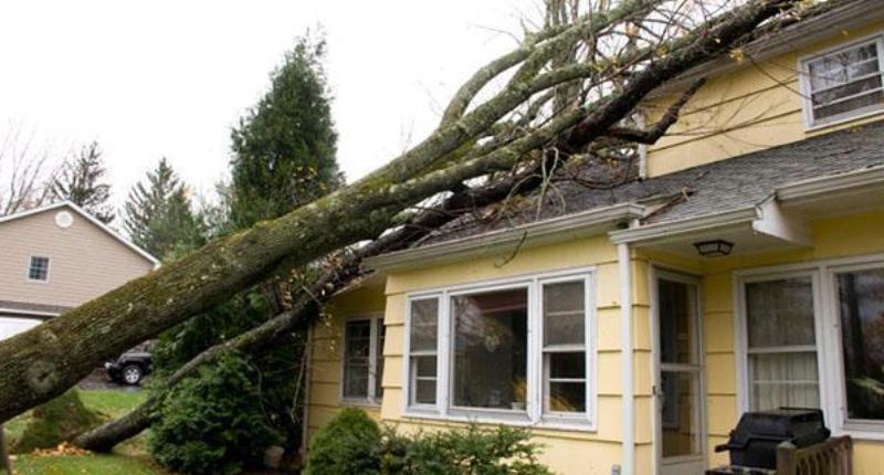 quante case sono assicurate contro gli eventi atmosferici