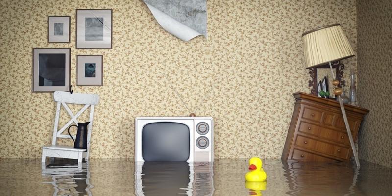 quante case sono assicurate per i danni da acqua